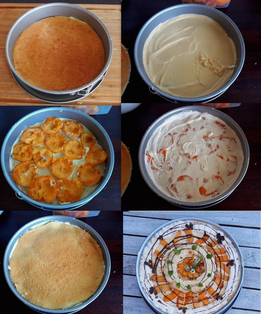 Meruňkový dort - vyskládání na piškot